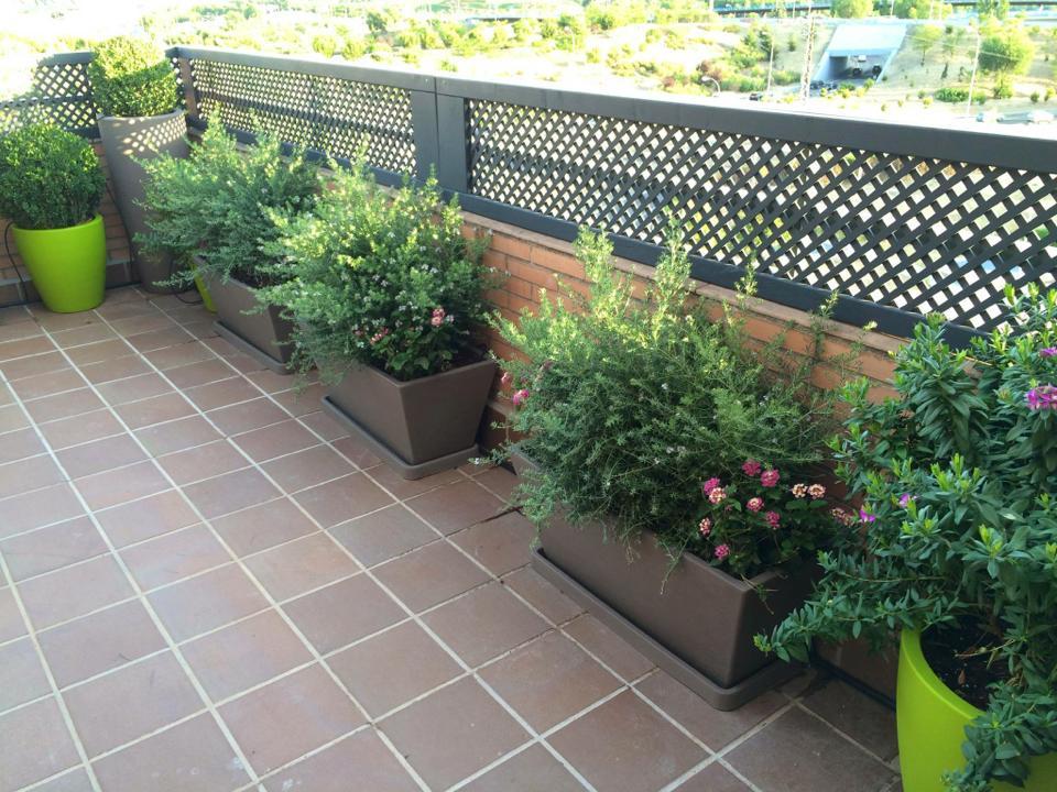 Terraza tico complejo nova - Jardineras para terrazas ...